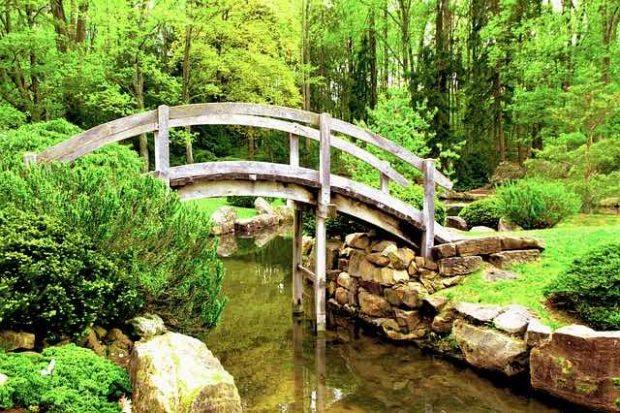 Quelques conseils pour un beau jardin